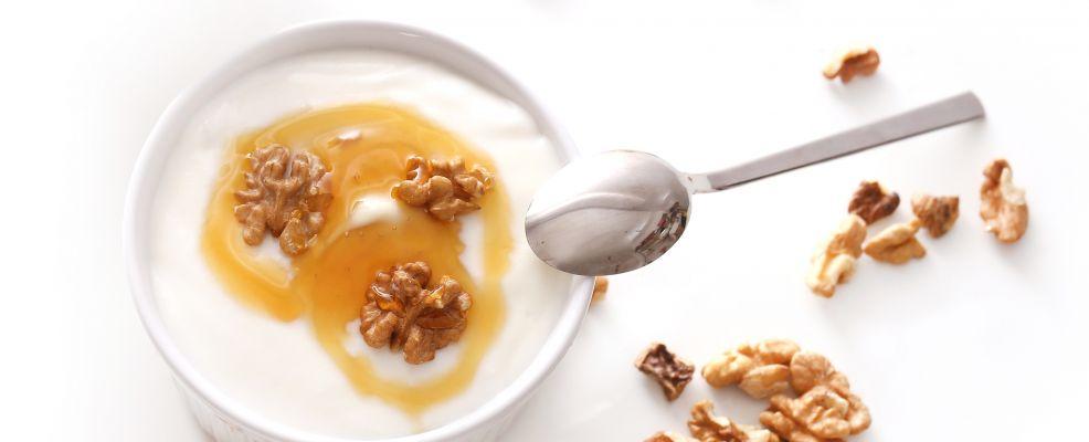yogurt_greco_shu_196402877