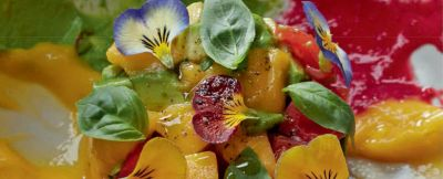 tartare di avocado, mango e pomodoro pachino