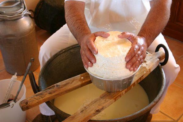 lavorazione formaggio
