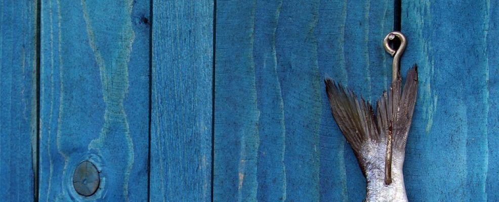 pesce appeso a sfondo azzurro_miti da sfatare