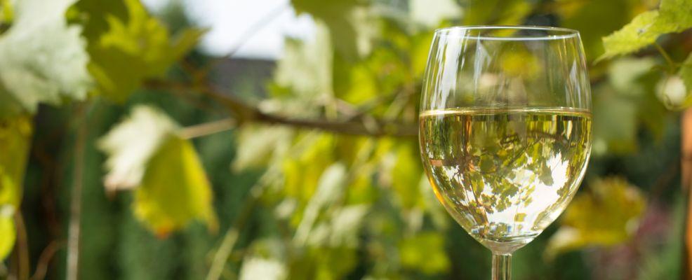 vini verdi