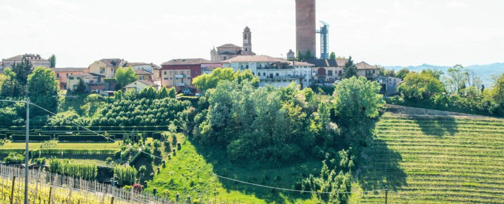 78383312 - landscape of langhe, piedmont, italy