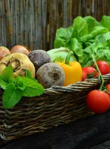 The Vegetarian Chance: un festival sul mondo veg