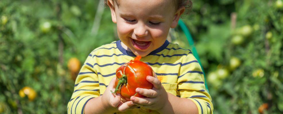 frutta verdura stagione bimbo