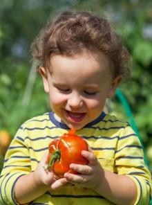 Perché è importante mangiare frutta e verdura di stagione