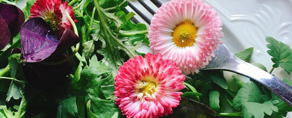 insalata di fiori21