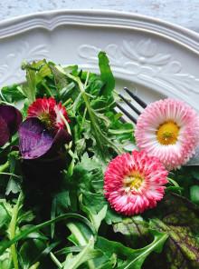 L'ultimo grido in cucina? Un fiore nel piatto