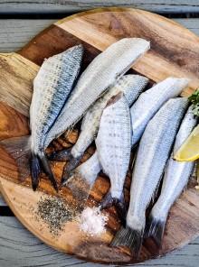Quello che ti sei sempre chiesta sul pesce d'allevamento
