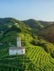 Paesaggio del Conegliano Valdobbiadene Prosecco candidato a Patrimonio Unesco_photo credits Arcangelo Piai_LOW