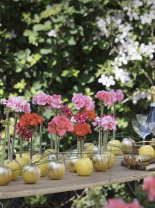 Metti un geranio in tavola… e l'estate va in festa!