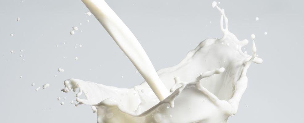 latte A2