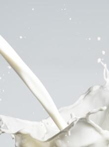 Arriva il latte 2A super digeribile (e stavolta il lattosio non c'entra)