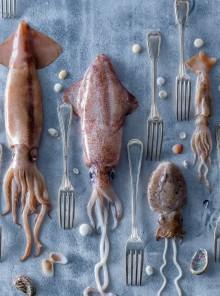 Come pulire e preparare calamari, totani e seppie