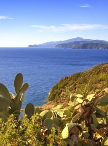 Alla scoperta delle bellezze dell'Isola d'Elba