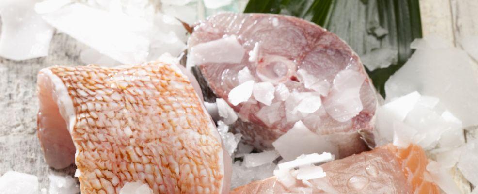 pesce filetti e tranci