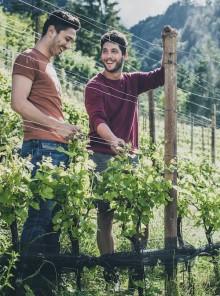 Alto Adige: ripartire dai giovani con creatività e passione