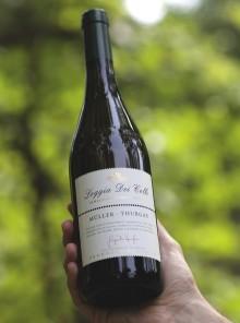 Vino bianco d'estate: la convivialità secondo Loggia dei Colli
