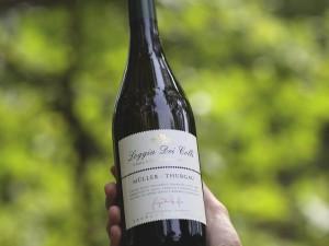 vino-bianco-@salepepe