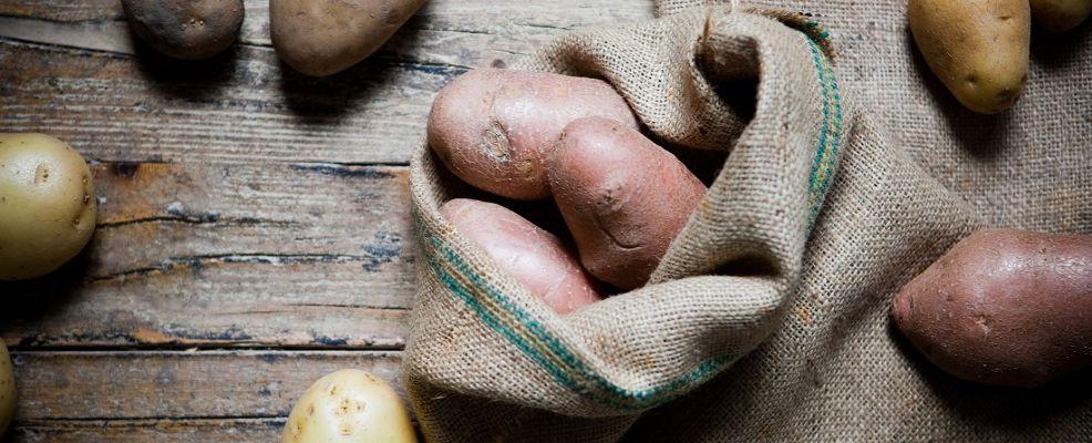 patate-@salepepe